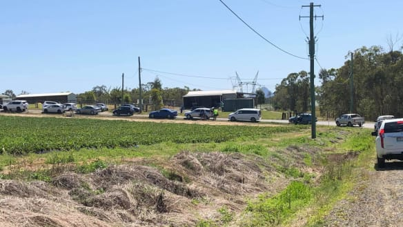 Queenslanders turn out in droves to support strawberry farmers