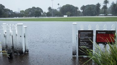 A flooded Jubilee Oval in Glebe on Wednesday morning.