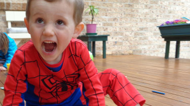 Mystery: William Tyrrell, who vanished in 2014, dressed in his Spider-Man suit.