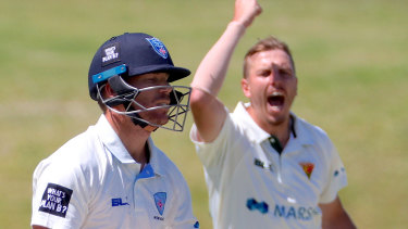 David Warner (left) is dismissed by Sam Rainbird during day two of the Sheffield Shield match between NSW and Tasmania at Drummoyne Oval.