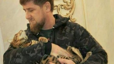 Chechnyan leader Ramzan Kadyrov pictured with his cat.