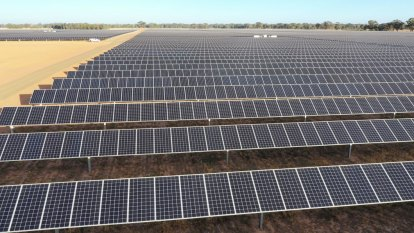 'No limits': Victoria's biggest solar farm paves way for more