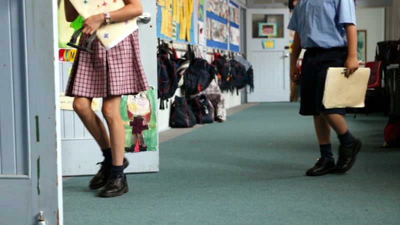 Religious schools should be allowed to deny the 'new' gender identity of students, expert says
