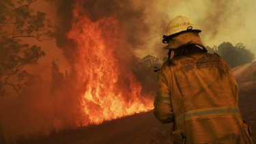 Firefighters tackle a bushfire on Wednesday during a total fire ban in NSW.