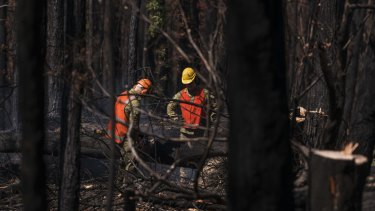 The clean-up of debris left by this summer's bushfires is expected to take until the end of June.