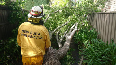 The NSW Rural Fire Service helped with clean-up efforts in Thornleigh.