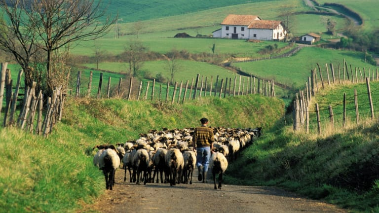 Most French people aspire to live in the countryside.