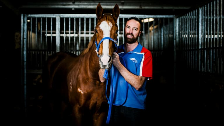Canberra trainer Nick Olive thinks his former stable star Single Gaze is a red-hot chance in the Chelmsford.
