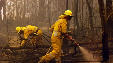 Queensland's fire brigades were at work over the weekend fighting hundreds of fires statewide.