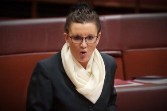Jacqui Lambie is a wildcard in the new Senate.