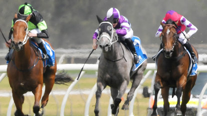 Race-by-race tips and preview for Randwick on Friday evening