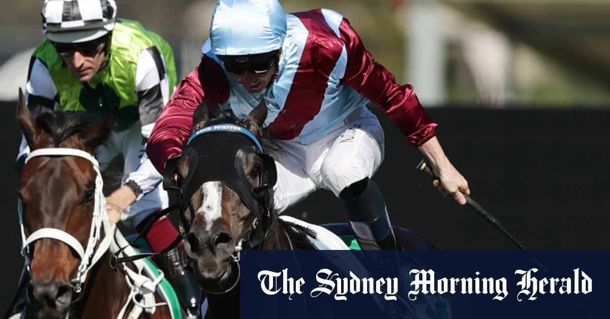 Race-by-race preview and selections for Scone on Friday