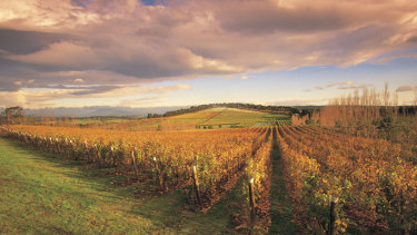 The weaker Aussie dollar is proving a good thing for the wine industry.