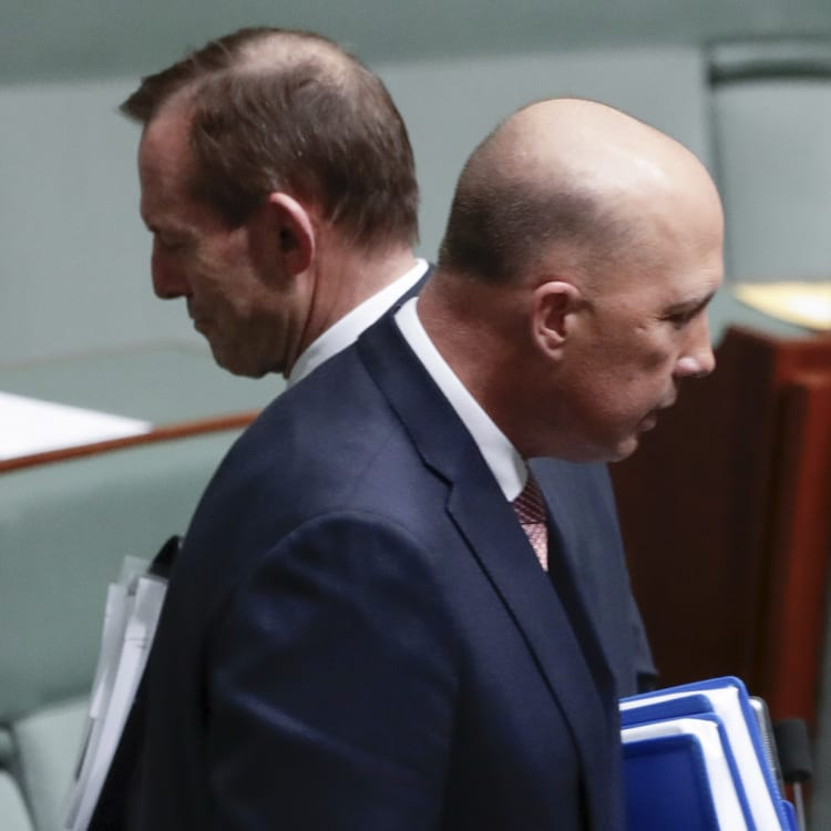 Liberal MPs believe former prime minister Tony Abbott joined forces with Peter Dutton to end Malcolm Turnbull's prime ministership.