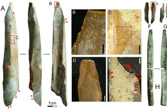 The tools were of various sizes and likely used for a range of purposes up to 46,000 years ago.