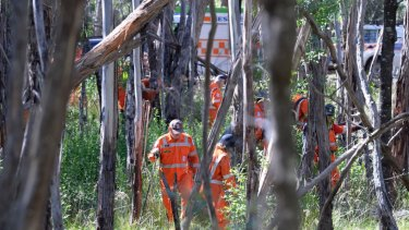SES volunteers search the bushland where Karen Ristevski's body was found.