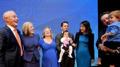 Power, money, family, politics: The Turnbull lawsuit