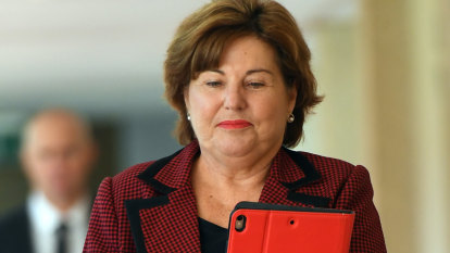 Premier dismisses speculation over Miller bid for Ipswich mayor