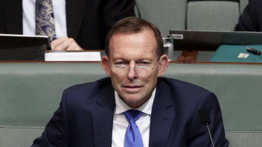 Leading the charge against the NEG: Tony Abbott in Parliament this week.