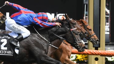 Michael Walker was penalised for breaching the whip rule aboard second-placed Prince Of Arran after a thrilling finish to the Melbourne Cup.