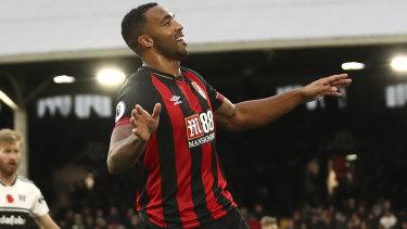 Top scorer: Bournemouth's Callum Wilson grabbed 14 league goals last year.