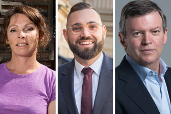 Labor MPs Sonja Terpstra, Dustin Halse and Frank McGuire are pushing for the Victorian government to raise the age of criminal responsibility to 14.