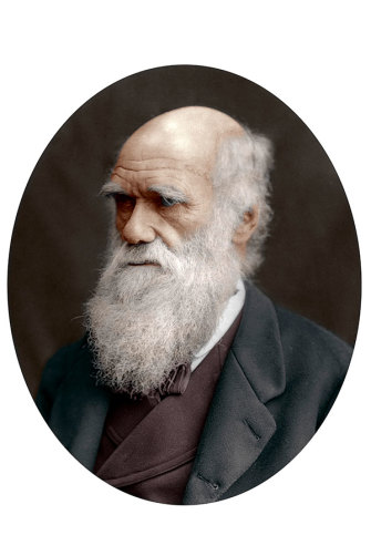 British naturalist Charles Darwin in 1878. Decades earlier, he had visited Australia during a round-the-world trip on the naval ship the HMS Beagle.