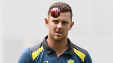 Hazlewood 'bitterly disappointed' by double World Cup snub