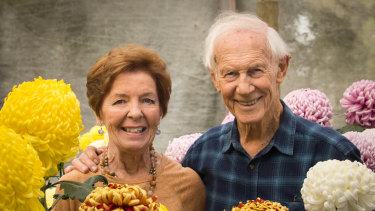Ronda, President of the Chrysanthemum Society of Victoria, and husband Bill Jenkins with their current crop.