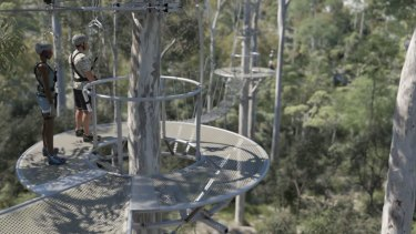 The Mt Coot-tha zipline will also include a 'skywalk'.