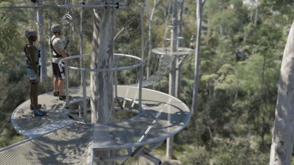 New lord mayor scraps the Mount Coot-tha zipline