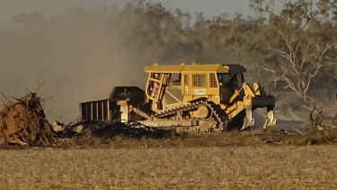 Land clearing in north-western NSW is continuing apace even with the drought.