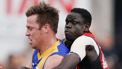Seagulls to face Tigers in VFL grand final