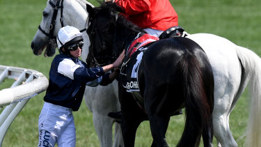 Jockey Ryan Moore with The Cliffsofmoher after the horse's injury in this year's Melbourne Cup.