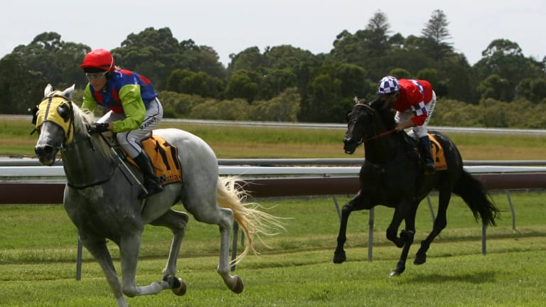 Back in Ballina: racing returns to the northern rivers with an eight-race card on Monday.