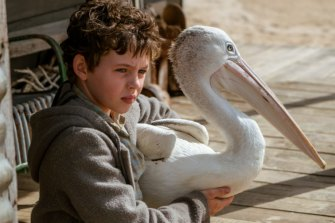 Finn Little starring in the film Storm Boy.