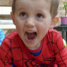 Police investigating Tyrrell disappearance put Spider-Man suit in bushland, court told