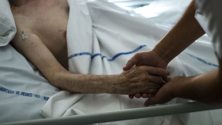 Voluntary euthanasia advocates have called on the Queensland government to fast-track its inquiry.