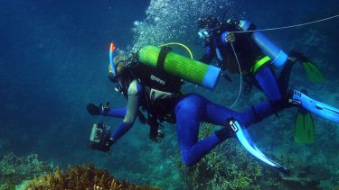 The Great Barrier Reef Marine Park Authority is to get a new chief.