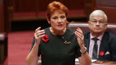 Pauline Hanson, who once said: 'I can see in Donald Trump a lot of me.'
