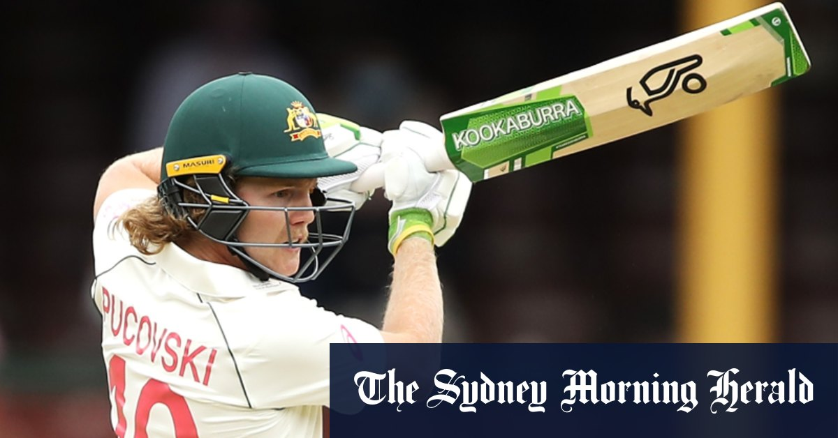 A star is born: How Will Pucovski's innings of 62 unfolded – Sydney Morning Herald