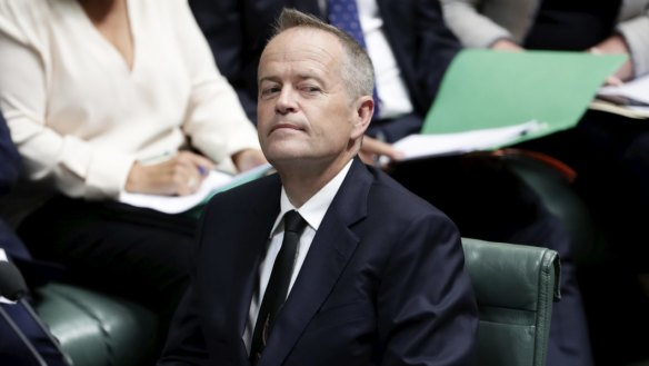 Shorten should have called for an election immediately