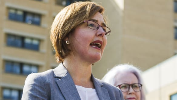 Calls for full inquiry as minister's review labelled 'half-baked'