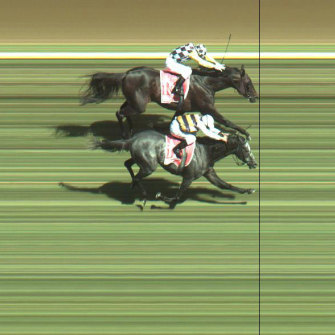 A photo finish in which Viewed pips Bauer at the post in the 2008 Cup.