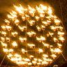 Thousands flock to botanic garden of fiery delights