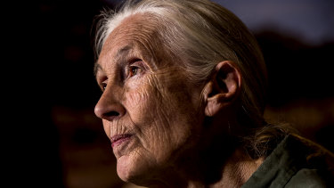 Dr Jane Goodall has passed the baton over to the next generation of conservationists.