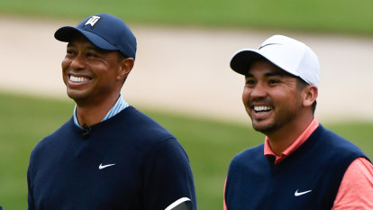 Cat out of the bag: Day turns to Tiger for swing help