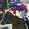 Hawkesbury hosts Ladies' Race Day earlier this month.