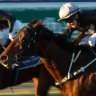 Race-by-race tips and preview for Newcastle on Tuesday