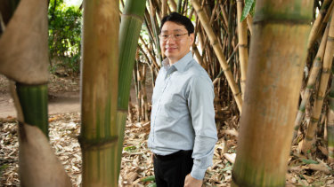 "Professor Ziqi Sun's ""eureka"" moment came while walking through the Botanic Gardens in Brisbane."